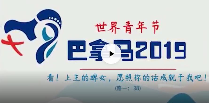 视频|2019世青节主题曲中文版